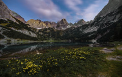 Late afternoon up there (norbertfulep) Tags: austria austrianphotographers lake mountain mountains bergsee sunset cloudy tranquility flower mirroring landscape