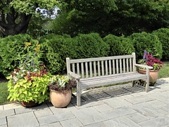 Wheaton, IL, Cantigny Park, Wood Bench with Planters and Flowers (Mary Warren (8.7+ Million Views)) Tags: wheatonil cantignypark summer garden nature flora plants trees leaves foliage green wood bench planter ceramic blooms blossoms flowers