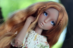 IMG_8269 (Cleo6666) Tags: lana lillycat cerisedolls marron glacé bjd doll chibbi