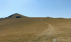 Monte Linguaro, strade sul parquet (AvventureInSella) Tags: montagna montelinguaro panorama sentiero