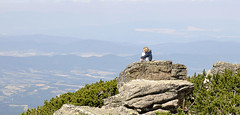 Contemplative in Rila (Lee Carson) Tags: bulgaria borovets samokov mountain rila d90 nikon mrlee