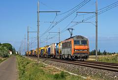 BB26116 (maurizio messa) Tags: bb26000 sybic freighttrain ferrovia fret france francia cargo mau bahn guterzuge nikond7100 treni trains railway railroad alstom occitanie gard nimes