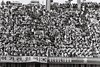 제24회 서울올림픽 하키경기 #5 (익사이팅경기) Tags: 경기도 경기도청 제24회 서울 올림픽 하키 경기 관중들 응원석