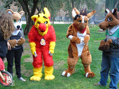 DSC00171 (Thanriu) Tags: fursuit chile meet junta furry santiago friends amigos canid monster avian ave canino monstruo badge angel dragon parrot artic wolf yerik dog