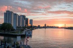 Rotterdam 15-07-2017-5 (Pure Natural Ingredients) Tags: rotterdam sunrise zonsopgang erasmusbrug erasmusbridge glow skyline orange blue