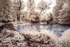 SAM_9939-3 (Dominik Novotny) Tags: infrared lednice valtice samsung nx11 infra red awesome conversion 720nm highlights czech republic summertime summer trip ir love this beautiful nostalgic another world