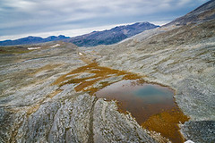 torngat0398 (Destination Labrador) Tags: morrow torngatmountainsnationalpark scenerywildlife scenery summer summerscenery 2017