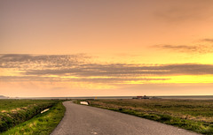 The road to sunset. (Alex-de-Haas) Tags: 1635mm d750 dutch dutchskies hdr holland hollandseluchten lowcountries nederland nikkor nikkor1635mm nikon nikond750 noordholland thenetherlands avond beautiful bloemenveld bright daglicht daylight evening field highdynamicrange kleuren kleurrijk laagland landscape landscapephotography landschap landschapsfotografie lente licht light lucht luchten mooi nature natuur overdag plant polder serene skies sky spring sun sundown sunny sunset tripod zon zonnig zonsondergang
