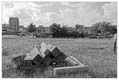 Des poutres posées là... (Jean-Marie Lison) Tags: eos80d bruxelles anderlecht laroue friche rue poutres