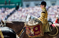 DUKE OF CAMBRIDGE TAKES THE SALUTE  FOR HIS FIRST COLONELOS REVIEW (Defence Images) Tags: aiguillette musiciansjockeycap householdcavalrytrooperssword householdcavalrycuirass braid lanyard ceremonial clothing bugle weapons flag crowds themall army lifeguardstrooperhelmet colonelsreview footguards guardchange guards hrh householddivision irishguards london queensbirthdayparade royals thedukeofcambridge regiments theguardsdivision firstbattalion 1stbn 1ig location horseguards paradeground equipment headwear parade animal horse royalty royal family male hisroyalhighness prince william dukeofcambridge weather climate sunny hot occasion ceremonialevent action riding marching sword thehouseholdcavalry thehouseholdcavalryregiment hcr thelifeguards cavalrydrumhorseêsilverkettledrums silverkettledrumssilverkettledrums defence defense uk british military unitedkingdom gbr cavalrydrumhorsesilverkettledrums
