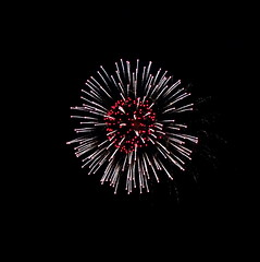 Forever lain hidden until now!_DSC00665 (jaciii (off&on)) Tags: fireworks independenceday july42017 black silver white red pink
