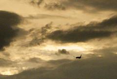Flying Into the Sunset (Bill in DC) Tags: australia sa southaustralia adelaide sunsets gulfofstvincent 2009 glenelg flight flights qa qantas