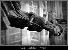 Gargoyles - 35 (fotomänni) Tags: prag prague praha gargoyles gargouille wasserspeier skulptur skulpturen veitsdom blackwhite schwarzweis noirblanc manfredweis
