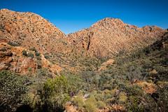 Larapinta Trail Day 1-2