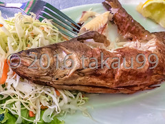 Grilled trout (_takau99) Tags: 2016 eastern orthodox attraction august bulgaria bulgarian christian christianity church cuisine cultural culture destination dish europe european fish food gourmet grilled heritage lunch meal menu monastery religion religious rila site specialty takau99 tour tourism tourist travel trip trout unesco world