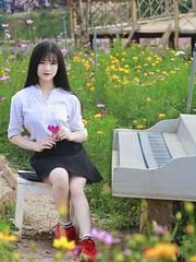 Cute (Lương Thành) Tags: girl summer color contrast canon tele cute beau portrait 55250mm 85mm f18 600d romantic blue flower piano photoshop lightroom light sun white red