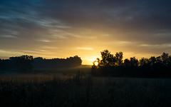 No words... (Köömbroder) Tags: sunrise sonyalpha6000 impressive sonnenaufgang wendland germany norddeutschland nebel dust clouds wolken sky sel50f18