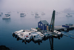 Fogged in (bingley0522) Tags: rollei35singapore rolleitessar40mmf35 portra400 vinalhaven maine fishingboats fog autaut