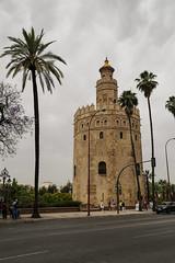 2017 SPM0213 Torre del Oro (Tower of Gold) in Sevilla, Spain (teckman) Tags: 2017 europe sevilla seville spain torredeloro andalucía es