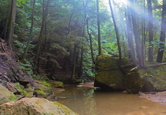 Tranquil Stream (brutus61534) Tags: stream rock water trail trees sunlight morning ohio hocking hills