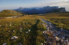 FK-ACH314-1608fPK-0758 (k00d'z00m) Tags: paysagesnaturels france auvergnerhã´nealpes sainthilaire dentdecrolles flickr auvergnerhônealpes