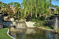 Hotel Barceló Sancti Petri (NataliaRdO) Tags: barceló sancti petri cádiz andalucía españa hotel verde agua azul hojas lago cascada mayo