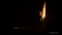 Here in this Room (Thousand Word Images by Dustin Abbott) Tags: sigma30mmf14dncontemporary lens naturallight sonya6500 montebello woman adobelightroomcc review mirrorless dustinabbottnet light thousandwordimages shadows alienskinexposurex2 2017 sony apsc travel fairmont photography comparison dustinabbott adobephotoshopcc chateaumontebello quebec canada photodujour québec ca explore explored