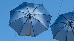 Colourful Umbrella Installation - Kingston - London (Lauren Taliana) Tags: streetart street art parasols parasol sky elements umbrella umbrellas bright colourful colour blue installation modern kingston flickr ornament ornamental london