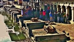 "NEPAL, Pashupatinath,Hindutempel und Verbrennungsstätte, zahlreiche Feuer brennen an den Surya Ghats, 16346/8658 (roba66) Tags: reisen travel explore voyages roba66 visit urlaub nepal asien asia südasien kathmandu pashupatinath ""pashu pati nath"" ""pashupati ""herr alles lebendigen"" tempelstätte hinduismus shivaiten tempel verehrungsstätte shiva tradition religion building architektur architecture arquitetura kulturdenkmal monument bau fassade façade platz places urban historie history historic historical geschichte verbrennung burning furnal ghats verbrennungsstätte beisetzung zeremony brauchtum kultur culture"