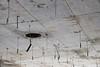 Abgehangen (MKP-0508) Tags: lostplace wiesbaden verfall evanescence abandoned forsaken abandonné déserté decke plafond ceiling urbex urbanexploration verlassen morbid deserted minimal