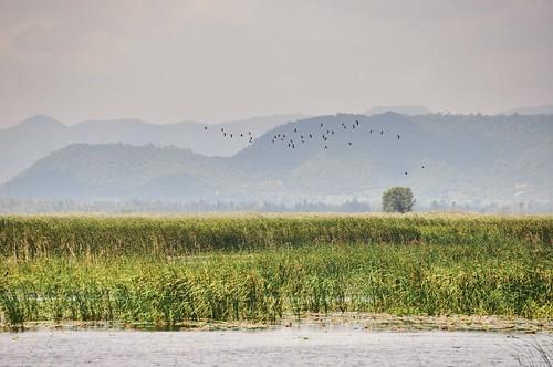 parc national sam roi yot - thailande 64