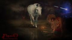 📧 👼 EVERYDAY-YOU-GET-A-MESSAGE 👼 📧 (ॐFLEXI INDIGOॐ) Tags: message bottle horse forrest spirit star starseed indigo