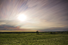 Early Sunset (Matt Molloy) Tags: mattmolloy timelapse photography timestack photostack movement motion colourful sky clouds trails lines sun light trees field flowers dandelions seeleysbay ontario canada landscape nature lovelife