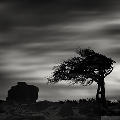 Black Rock. (Ray Bradshaw.) Tags: beautyinnature bradshaw dramaticsky devon england extremeterrain famousplace isolated landscape longexposure mono moodysky nopeople nonurbanscene outdoors photography rockformation scenics tiekieraymondbradshawphotography tree uncultivated square