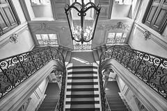 Downstairs (Arx Zyanos) Tags: sony a6500 ilce6500 sonya6500 samyang samyang1220 samyang2012 munich münchen stairs treppen treppenhaus staircase preysing barock baroque palaispreysing monochrom schwarzweis blackandwhite blackwhite bw
