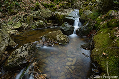 Chefna River. (gillesfrancotte) Tags: 2017 amblève april ardennes avril aywaille bablette chefna d800 forêt nd nikon nikonpassion outdoor quarreux stoumont cascade creek eau fall forest landscape longexposure nature printemps river spring stream torrent tripod water watercourse waterfall waterscape wallonie belgique