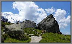 Sur le sentier (myvalleylil1) Tags: france alpes montagne mountain hautesavoie chamonix montblanc