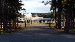 The gathering (V. C. Wald) Tags: yellowstonenationalpark oldfaithfulgeyser uppergeyserbasin