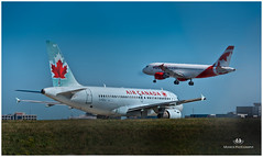 SEPTEMBER 2016  NM1_0442_014563-222 (Nick and Karen Munroe) Tags: aeroplane aeroplanes airplanes airport aircanada aircraft airportairportflyingplanesairlinesaircanada canada colour color colors aviation pearsoninternationalairport yyz yyztoronto piainternationalairport gtaa munroedesignsphotography munroedesigns munroephotography munroe karenick23 karenick karenandnickmunroe karenmunroe karenandnick nikon nickmunroe nickandkarenmunroe nickandkaren nikond750 nikon70200f28vrii nikon70200f28 ontario outdoors ontariocanada planes jets jet a300 airbus