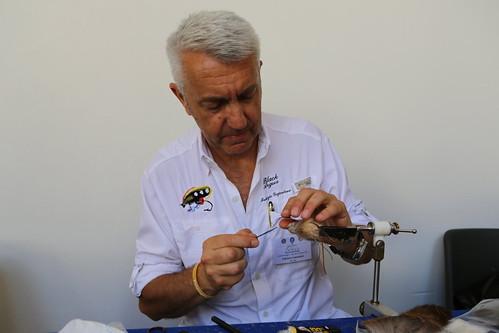 Fabrizio Gajardoni