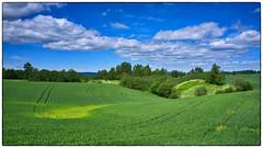 Åkerlandskap 17.06.2017 (Krogen) Tags: norge norway norwegen akershus romerike ullensaker hovin landscape landskap krogen fujifilmx100