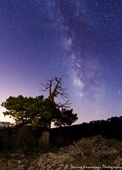 chasing stars (stavros karamanis) Tags: milkyway nightphotography stars earthporn landscape outdoor nature nightsky nightscape canonphotography canonusers canon t3i tokina 1116mm f28 cyprus troodos night sky