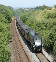 """60009 Class A4 """"Union of South Africa"""" (Roger Wasley) Tags: 60009 union south africa lner class a4 steam locomotive train railways cathedralsexpress uptonscudamore wiltshire"""