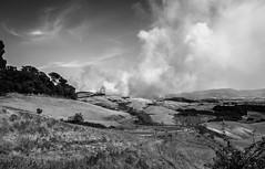 (_marcocosta) Tags: fire landscape bw blackandwhite tuscany italy canon canon1100d tamron