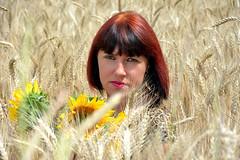 DCS_3820_00009 (dmitriy1968) Tags: portrait портрет nature природа erotic sexsual эротично beautiful girl wife люди people evening придонье девушка отдых путешествия outdoor секси пшеница wheat солнечный день sunny day