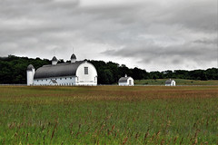 Icon of Michigan's Agricultural Heritage (Jan Nagalski) Tags: farm barn silo outbuildings historicalbuildings agriculture glenhaven dhdayfarm dhday iconic museum grass wheat silage rural farmland michigan upnorth northernmichigan jannagalski jannagal stormclouds darkclouds overcast weather