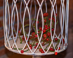Glass berries (KF-GR) Tags: nikon d750 nikond750 tamron tamron35 tamron35mmf18vc fx objects