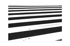 IMG_0844 (narmi786) Tags: photographer photography tumblr aesthetics school year11 year 11 park flowers light painting nature journey poetry artist art aesthetic double exposure dslr amateur noir black white blanc blanche blancetnoir blackandwhite london sepia south bank londrés striped stripes road crossing noiretblanc japan tokyo beijing rue bike vélo