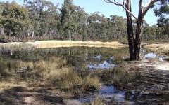 570 Stewarts Crossing Road, Oallen NSW