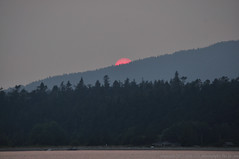2017-08-01 Sunset (02) (1024x680) (-jon) Tags: anacortes skagitcounty skagit washingtonstate washington salishsea fidalgoisland sanjuanislands pugetsound guemeschannel pnw pacificnorthwest northwest pacific waterfront sky sunset sun red ball redball fires smoke haze forestfire wildfires britishcolumbia a266122photographyproduction